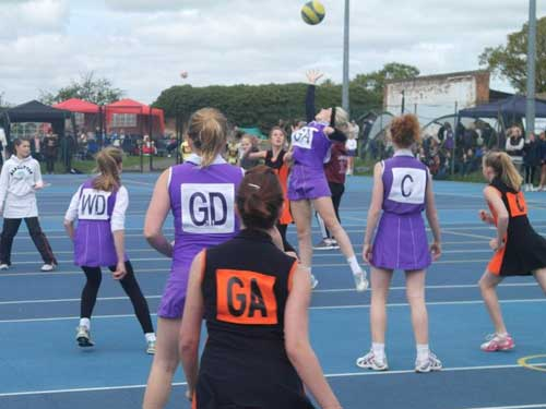 chelmsford junior netball home page image